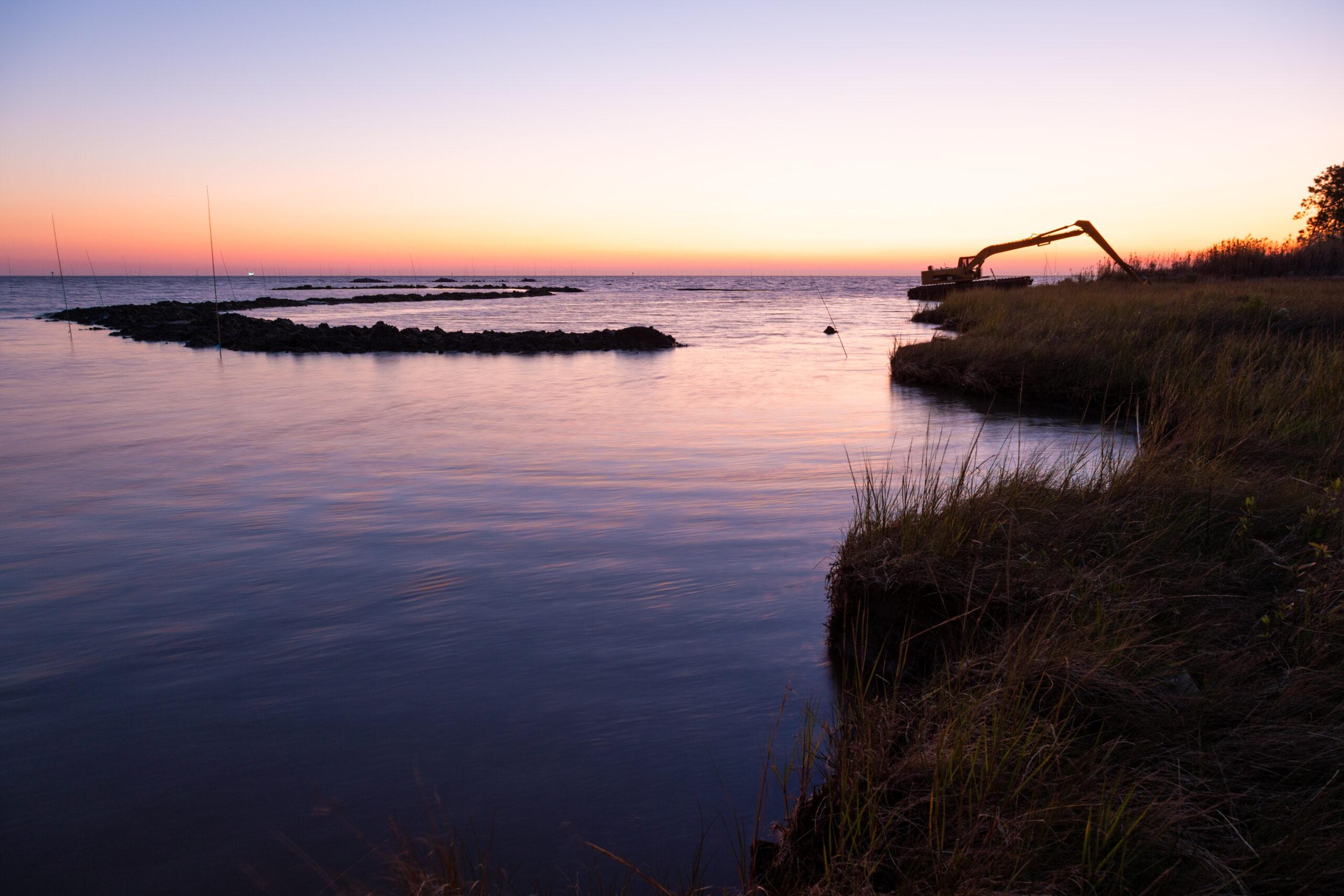 Bayou la Batre marshes