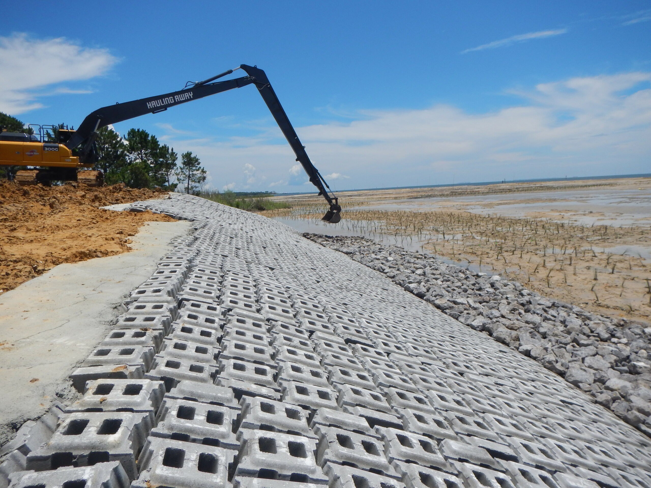 Shoreline renovation